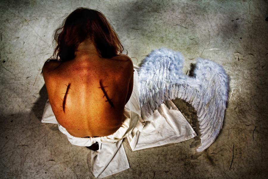 картинки со сломанными крыльями представители семейства настоящих