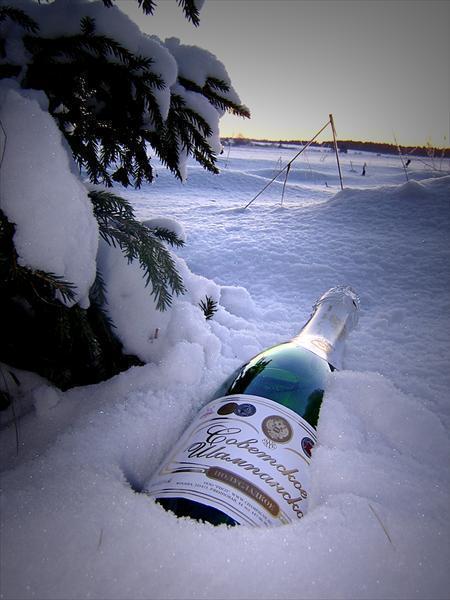шампанское в снегу картинки фото
