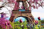 весна в Париже...