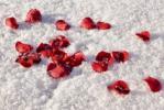 подножка на снегу