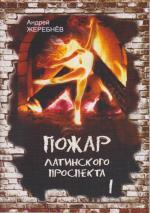 Пожар Латинского проспекта   Автор: Андрей Жеребнев