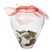 Бабочки Подарок от автора Валерий Асанов