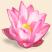 Объёмный цветок Подарок от автора Helga