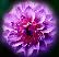 цветочек Подарок от автора eji