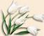Flowers Подарок от автора Елизавета Носкова