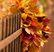 Осенний букет Подарок от автора Татьяна Гурская