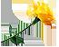 Желтая роза Подарок от автора Александр О. (Актёр)