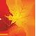 """Произведение «ОСЕННИЙ СОНЕТ» участник на «Конкурс """"Лучший сонет об осени""""»"""
